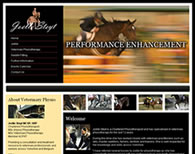 Joelle Steyt Equestrian Physiotherapy Screenshot